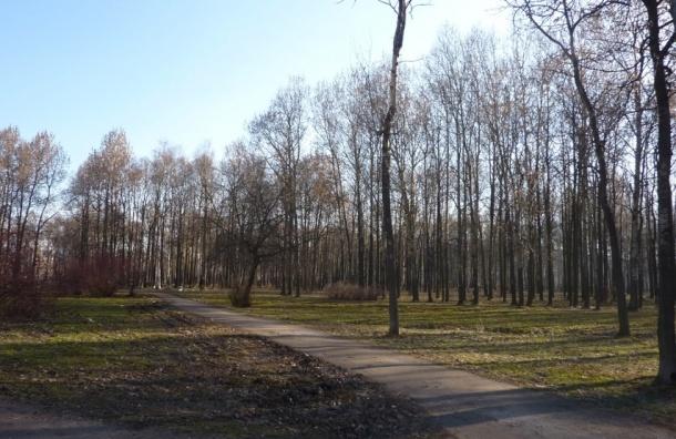 В День цирка циркачи отметятся мега-уборкой парка Есенина