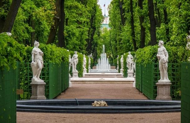 С 1 июня вход в Летний сад может стать платным