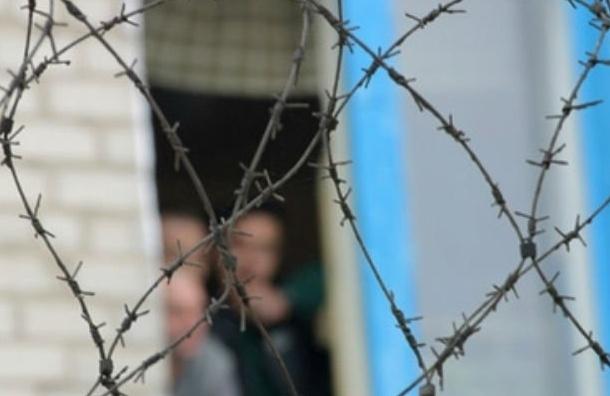 В Госдуму внесен проект широкой амнистии в России к юбилею Победы