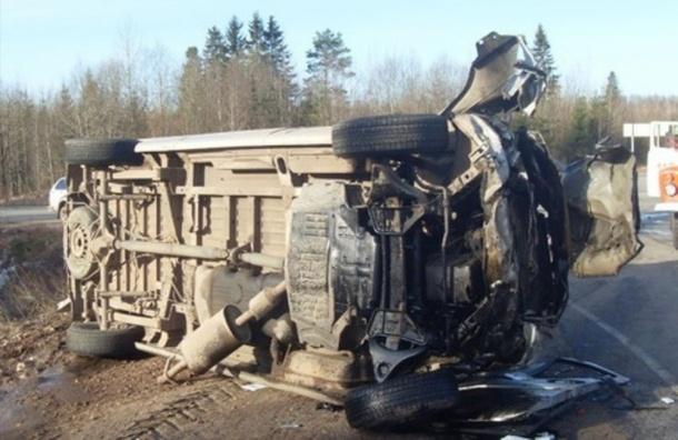 Авария у Пикалево: по факту ДТП возбуждено уголовное дело