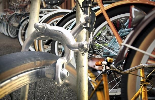 Велосипедистам разрешили выделенку – что изменится в городе
