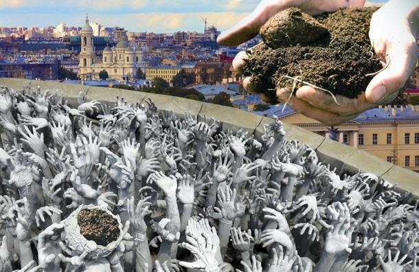 Петербуржцы умирают из-за отравленной почвы