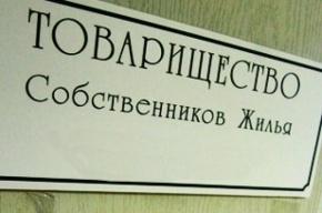 В Петербурге бухгалтер ТСЖ на деньги жильцов купила Chevrolet Cruze и сделала ремонт в квартире