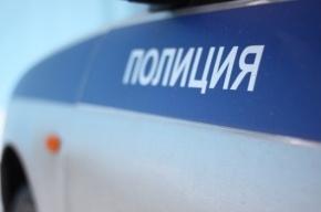 В Ново-Девяткино по горячим следам задержан уличный грабитель