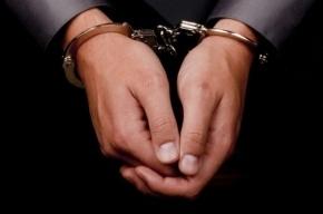 В центре Петербурга 17-летний разбойник похитил у прохожего документы и телефон