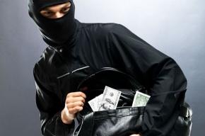 В Петербурге поймали двух мужчин, подозреваемых в грабеже