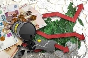Кризис в Петербурге ударил по фермерам и любителям бананов