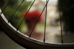 На Дворцовой площади корейский турист попал под колеса велосипеда