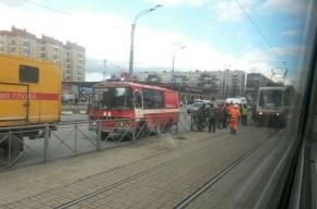 На улице Дыбенко трамвай сбил пенсионерку на пешеходном переходе