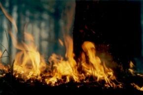 Строительная бытовка сгорела на стройплощадке в Парголово