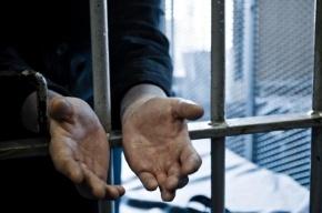 В Петербурге задержали серийного насильника