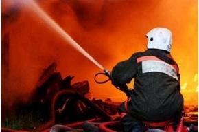 В результате пожара в частном доме в Ленобласти погибли два человека