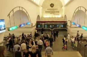 В Петербурге сегодня произошел сбой в движении по синей ветке метро