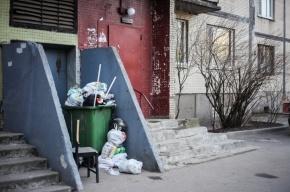 Петербуржцы просят администрацию Петроградского района разобраться с мусором