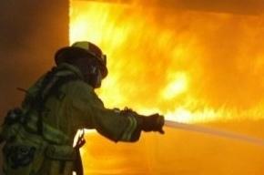Пожар на Гданькой улице: эвакуировано 11 человек