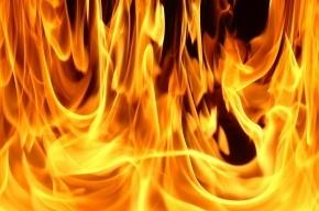 В Петербурге минувшей ночью горел ангар с продуктами