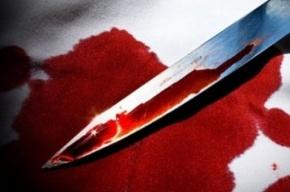 В Кингисеппе 35-летнюю бездомную будут судить за убийство