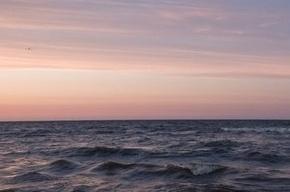 Двое мужчин утонули в Ладожском озере