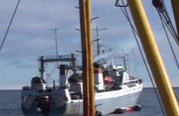 Траулер затонул в Охотском море: 54 человека погибло