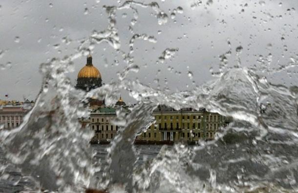 МЧС: В Петербурге днем усилится ветер