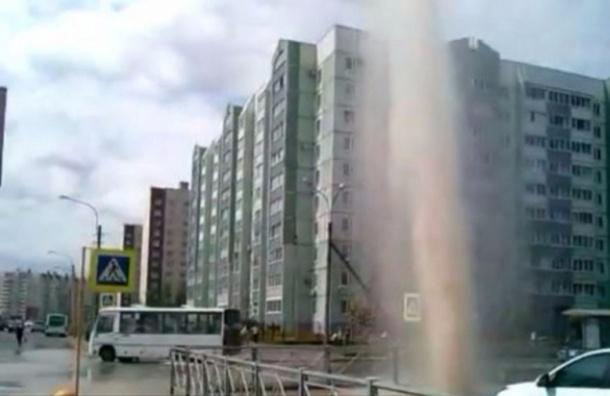 В Колпино из-под земли забил гейзер из-за коммунальной аварии