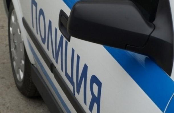 В Пушкине «Рено Логан» сбил полицейского и пешехода и пытался уйти от погони, но был пойман