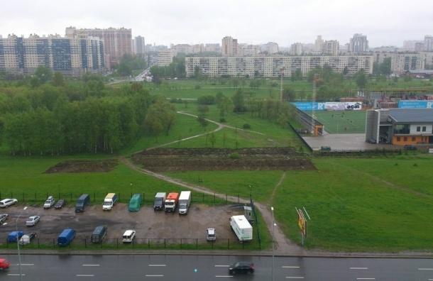 Часть Муринского парка может быть незаконно застроена