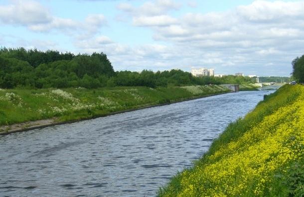 На берегу и в воде Дудергофского канала найден расчлененный труп мужчины