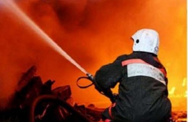 В Москве в аварии на Ленинградском шоссе заживо сгорела девушка