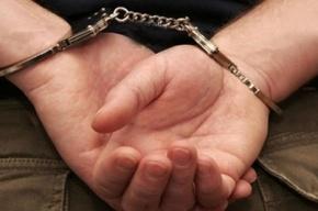 Задержаны двое мигрантов, ограбивших квартиру на Юкковском шоссе