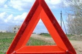В ДТП во Всеволожском районе погибли два человека