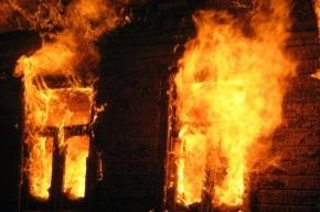 В Петербурге в пожаре на Петровском погиб человек