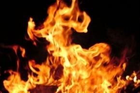 На Большом Сампсониевском горел цех по изготовлению метизов