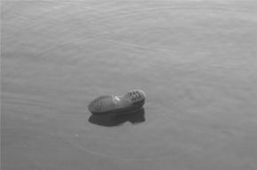 В Фонтанке утонул мужчина после своего дня рождения