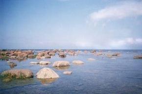 В акватории Финского залива нашли труп одного из пропавших моряков