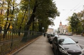 В центре Петербурга неизвестный занимает себе машиноместо бутылками с водой