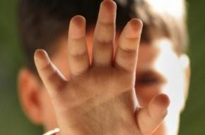 В Петербурге задержали приезжего, который изнасиловал 5-летнего ребенка