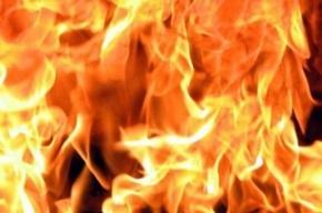 В Центральном районе произошел пожар в реконструируемом доме