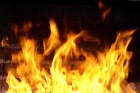 Семь человек спасатели эвакуировали из-за пожара в Приморском районе
