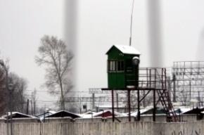 Из колонии в Форносово сбежал осужденный