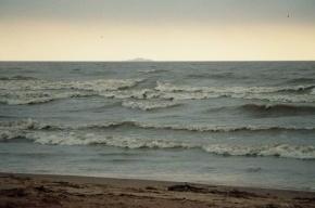 Из акватории Финского залива извлекли тело мужчины