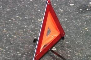 Три человека погибли в ДТП на Павловском шоссе