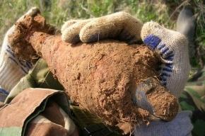 В Зеленогорске обнаружены две минометные мины