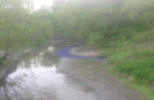 Воду в Волковке раскрасили в ярко-синий цвет