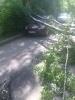 Фоторепортаж: «Ветер в СПб, 3.06.15»
