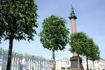 Парк на Дворцовой,10.06.15, фото: Сергей Ермохин : Фоторепортаж