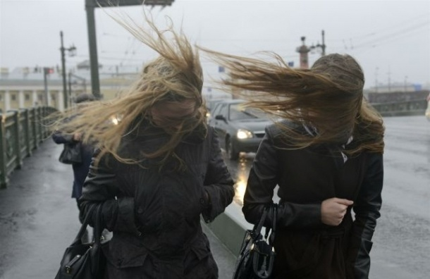 МЧС: В Петербург идет штормовой ветер