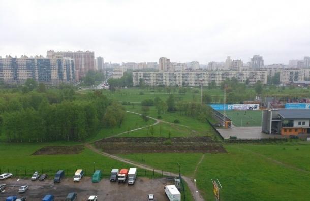 В Петербурге пройдет флэшмоб в защиту Муринского парка