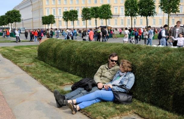 На Дворцовой площади выросли газон и деревья