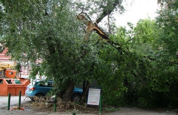 Ураган в Перми оставил без электричества более 8 тысяч человек